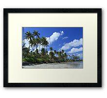 Dorado Seashore Framed Print