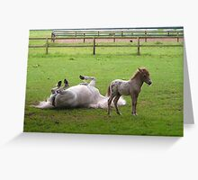 Horseplay Greeting Card