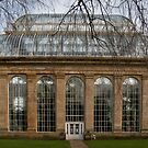 Victorian Temperate Palm House by Chris Clark