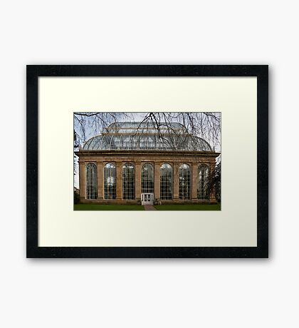 Victorian Temperate Palm House Framed Print