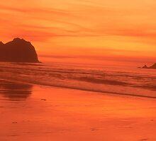 Copper sky, Klamath, California by Valarie Napawanetz
