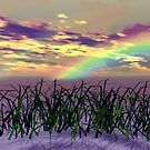 Rainbow Over The Reeds by MaeBelle