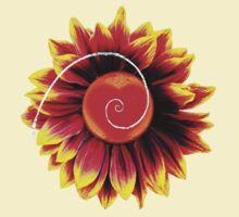 Sunflower Heart Phi Spiral by Randle