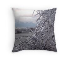 Ice storm on the farm Throw Pillow