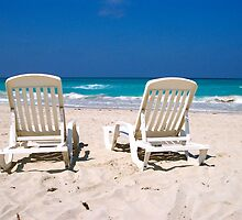 Best Seats in the House by Lynn Armstrong