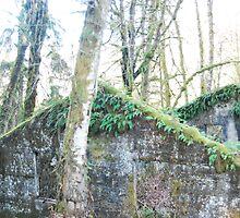 Old Historic Powerhouse by Edith Farrell