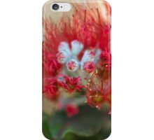 Red Bud Burst iPhone Case/Skin