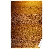 Cambridge Gulf Liquid Gold Poster