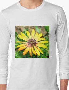 Orange Haze Daisy Long Sleeve T-Shirt