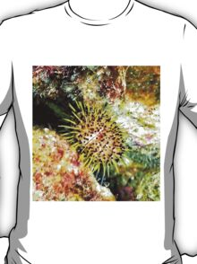 Jewell Sea Urchin on a Coral Reef T-Shirt