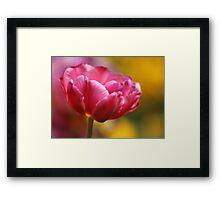 Thinking Spring Framed Print