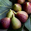 Figs and Leaves by picketty