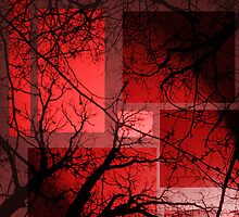 Red at Night by Chris Vandenberg