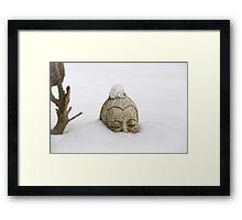 This is Zen Framed Print