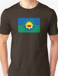 Flag of Buenos Aires Province  Unisex T-Shirt