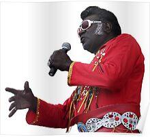 Elvis Parsnip (Parkes Festival 2010) Poster