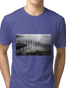 A gull on the lookout Tri-blend T-Shirt