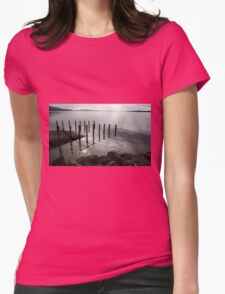 A gull on the lookout Womens Fitted T-Shirt