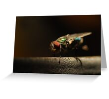 Pretty Pest Greeting Card