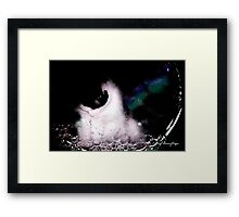 Kitten in a bubble Framed Print