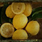 Just Lemons by Elaine Teague