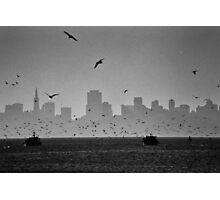 San Francisco Bay during annual herring run Photographic Print