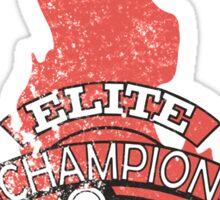 Elite Four Champion Flame Sticker