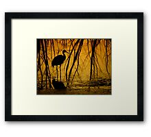 Avian Shadows ~ Part Two Framed Print