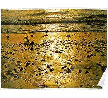 Bronze Shore photo painting Poster