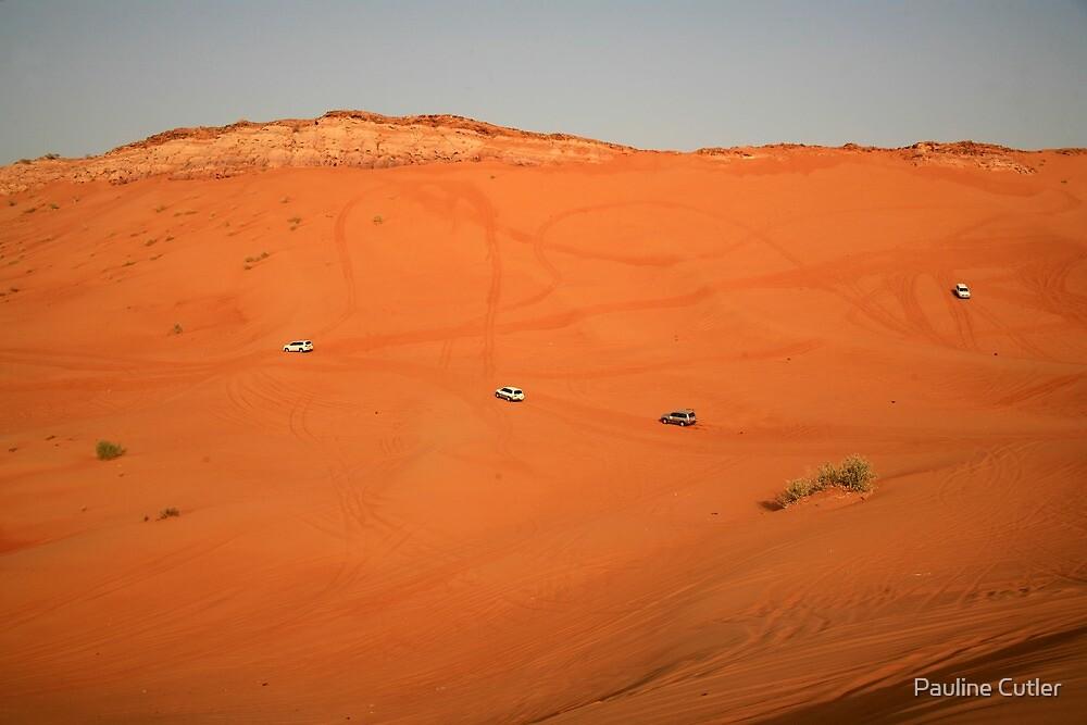 Dune Bashing, Desert by PaulineC