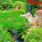 Garden Waterfalls photo painting by randycdesign