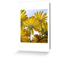 Look to the Sky Greeting Card