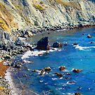 Rocky Shore photo painting by randycdesign