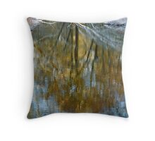Water Colours. Throw Pillow