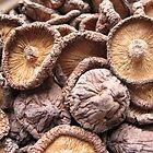 dry mushrooms by dominiquelandau