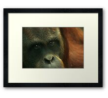 My history, in your eyes. Framed Print