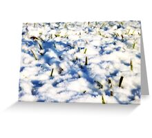 Snow Clouds on the Ground Greeting Card