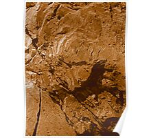 Brown Stone photo painting Poster