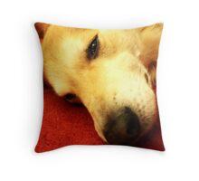 saz inside Throw Pillow