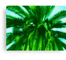 Palm Tree photo painting Canvas Print