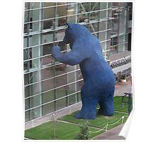 Denver Bear Poster