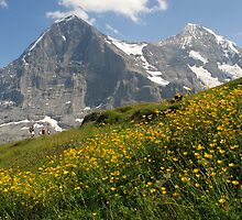 Switzerland - Eiger and Mönch by roumen