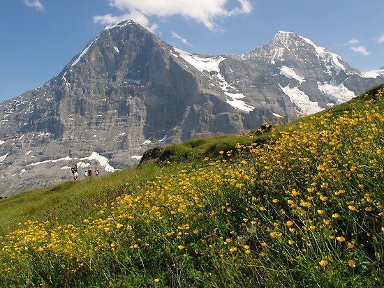 Switzerland - Eiger and Mönch by roumen