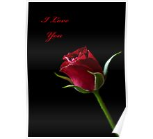 A Valentine Rose Poster