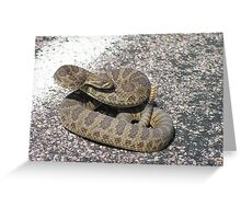 Angry Rattlesnake in Nebraska Greeting Card