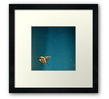 abeille Framed Print