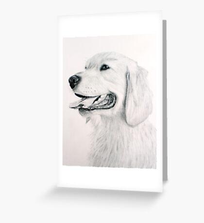 Golden Retreiver Greeting Card