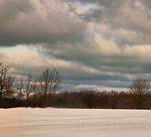 Winter Escape by GailDouglas