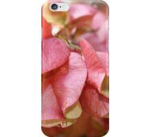 Pink Bougainvillea  iPhone Case/Skin