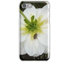 Flower and Bug iPhone Case/Skin
